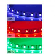 Stripe Colour_1